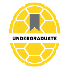 UMD yellow Opaque Shell Icon titled Undergraduate